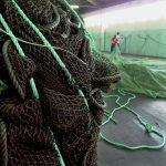 Materiał Carpet Studio -Marka EGE-sieci rybackie