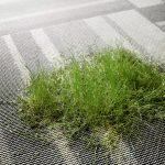 Materiał Carpet Studio - Marka EGE - wykładziny odpowiedzialne społecznie