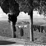 Plewiński naBankowym. Lavenderia Italiana