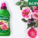 Piopon płyn róże