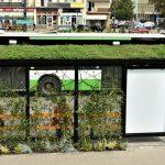 Zielone przystanki wBiałymstoku